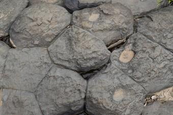 Chiêm ngưỡng suối đá cổ trên 100 triệu năm tuổi tại Gia Lai