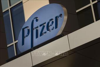 Pfizer dự báo 'bỏ túi' hơn 33 tỷ USD nhờ bán vaccine phòng COVID-19