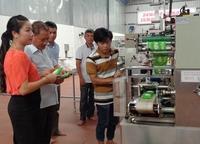 Khuyến công Hải Phòng: Hỗ trợ thiết thực cơ sở công nghiệp nông thôn