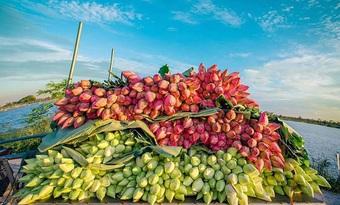 Biến đồng hoang thành đầm sen khổng lồ, anh nông dân lập kỷ lục mùa hái triệu bông hoa