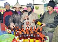 Hà Nội: Đưa hàng Tết về nông thôn
