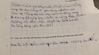 Được yêu cầu viết đoạn văn giới thiệu bản thân, học sinh lớp 1 ghi vỏn vẹn 4 từ mà khiến ai nấy cười vỡ bụng