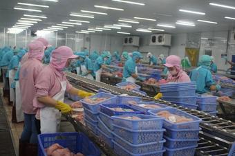 Cần Thơ: Bảo đảm an toàn thực phẩm trong sản xuất kinh doanh