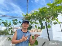 """Ở nhà giãn cách nghe """"anh chồng đảm"""" Sài Gòn mách cách trồng nấm bào ngư xám cho năng suất khủng"""