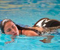 Đồ bơi tại Olympic từng may bằng vải xuyên thấu, trở nên trong suốt dưới nước