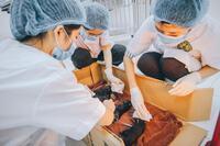 Bệnh viện Thú y, Học viện Nông nghiệp Việt Nam mở dịch vụ chăm sóc thú cảnh khi giãn cách xã hội