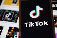 TikTok gỡ hàng triệu tài khoản nghi không trung thực về độ tuổi