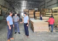 Quảng Bình: Bất chấp dịch bệnh, sản xuất công nghiệp tăng 5,9%