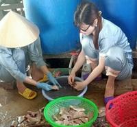 Bơi xuồng giăng lưới cá, xẻ từng con phơi khô gửi đồng hương ở vùng dịch