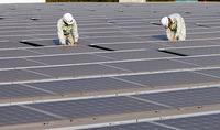 Doanh nghiệp chờ chính sách mới về điện gió, điện mặt trời