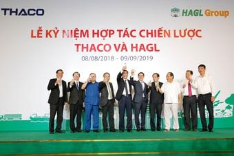 Thaco dừng mua thêm cổ phiếu, HAGL Agrico còn nợ BIDV bao nhiêu?