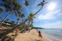Đầu tư một cuộc sống vì sức khoẻ - Nam Phú Quốc đang dẫn đầu xu thế
