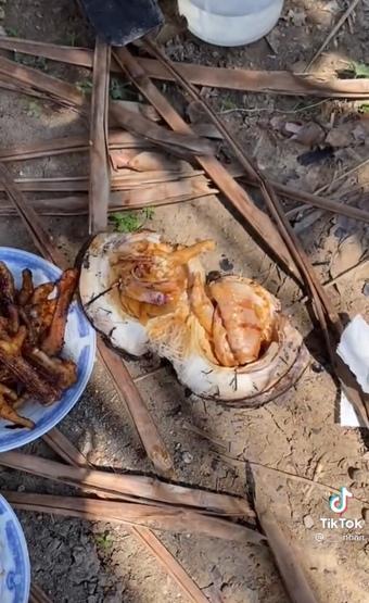"""Thanh niên nhét cả quả dừa vào đống than tưởng làm dừa nướng, đến khi bổ ra thì quá """"hết hồn"""" với thứ đặt bên trong"""