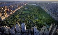 Tận hưởng cuộc sống tại căn hộ hạng sang có view ôm trọn công viên 47.000 m2