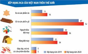 Vẽ lại bức tranh lợi thế so sánh của Việt Nam