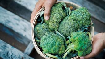 Ăn gì để tăng sức đề kháng? Bổ sung ngay 11 thực phẩm tăng cường miễn dịch, phòng chống Covid-19 hiệu quả