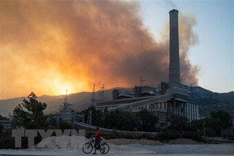 Thổ Nhĩ Kỳ sơ tán ở nhà máy nhiệt điện tại Milas do cháy rừng