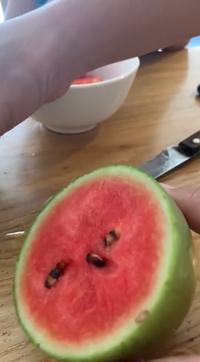 Cậu con trai bẻ mất trái dưa non đang trồng, người mẹ chiều con bổ ra ăn thử và cái kết khiến ai cũng xuýt xoa