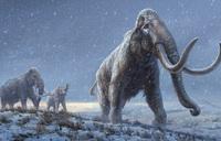 Hồi sinh voi ma mút từ thời tiền sử