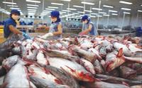 10 doanh nghiệp xuất khẩu cá tra, basa không bị áp thuế chống bán phá giá tại Mỹ
