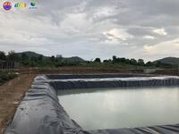 Đắk Lắk chuẩn bị đưa vào hoạt động trại heo cụ kị 2.500 con lớn nhất Tây Nguyên