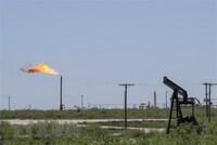 Giá dầu thế giới ổn định sau khi chạm mức cao nhất nhiều tuần