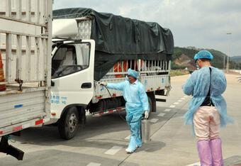 Trung Quốc tạm dừng nhập thanh long qua cầu phao tạm Đông Hưng