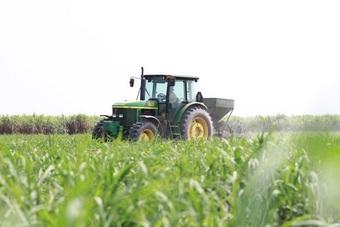 TTC Sugar phát hành gần 31,5 triệu cổ phiếu trả cổ tức, tỷ lệ 5%