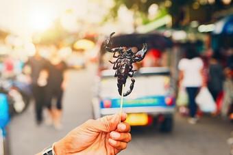 Hóa ra thiên đường ẩm thực Thái Lan cũng có những món ăn đáng sợ đến thế