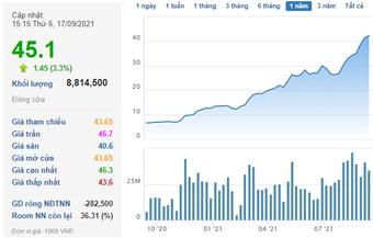 Tổng Giám đốc Thép Nam Kim đăng ký bán 15 triệu cổ phiếu NKG khi thị giá liên tục lập đỉnh