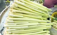 3 loại rau mọc hoang xưa chỉ coi là cỏ dại nay thành đặc sản hiên ngang trên bàn tiệc hạng sang ở miền Tây