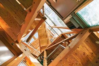 Gia đình ba thế hệ thiết kế ngôi nhà đặc biệt chỉ toàn ánh sáng và cây xanh ở Nhật Bản