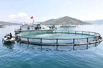 Dự kiến mức thu phí, lệ phí trong lĩnh vực quản lý vật tư nuôi trồng thủy sản