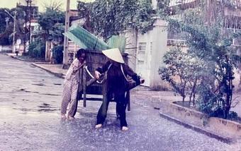 NSND Kim Xuân chia sẻ hình ảnh thời thanh xuân