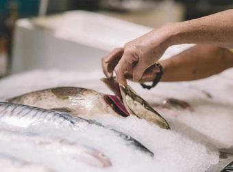 Những mẹo đơn giản để chọn cá tươi ngon các bà nội trợ cần biết