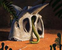 ''Qua mặt'' khủng long và thiên thạch hơn 60 triệu năm trước, loài rắn vẫn sống đến ngày nay như thế nào?