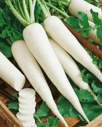 """Củ cải trắng cực tốt nhưng có thể hóa """"chất độc"""" khi kết hợp với những thứ này"""