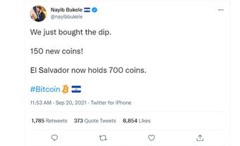 """Giá Bitcoin lao dốc, tổng thống một quốc gia lập tức bỏ ra hơn 155 tỷ đồng để """"bắt đáy"""""""