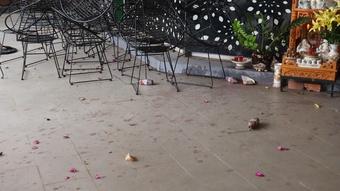 Bình Phước: Điều tra vụ một văn phòng bất động sản bị ném mắm tôm