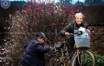 Khi nhiếp ảnh Hà Nội ''ngồi phệt''