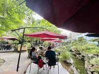 """Green Coffee Hà Nam: """"Khu rừng"""" nhỏ đưa bạn hòa mình với thiên nhiên"""