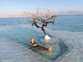 """Loài """"cây nhảy múa"""" độc đáo trải dọc bãi biển đảo Sumba"""
