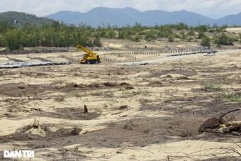 Tổng cục Lâm nghiệp chỉ đạo nóng về 2 vụ phá rừng ở Bình Định