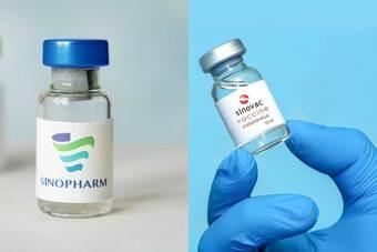 Vắc xin TQ có mặt ở hơn 100 quốc gia: Vì sao được nhiều nước sử dụng?