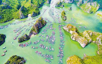 Ngỡ ngàng vẻ đẹp vịnh Lan Hạ – Viên ngọc bị 'lãng quên' ở Việt Nam