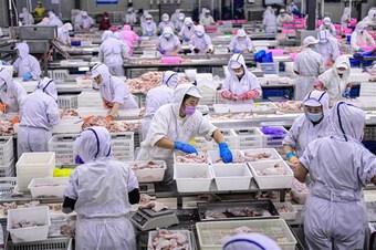 Fitch Ratings hạ dự báo tăng trưởng của kinh tế Trung Quốc