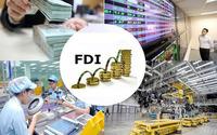 Toạ đàm 'COVID-19 và FDI: Tác động và triển vọng'