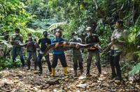 Bắt được trăn siêu ''khủng'' nặng 120 kg phải 9 người ôm mới nhấc nổi: Đây là loài trăn gì?