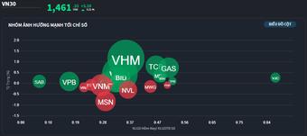 Dòng tiền thấp đột biến, trụ vẫn đỡ thị trường