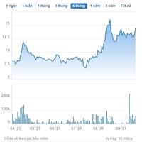 Chứng khoán Nhất Việt (VFS) mua 1,4 triệu cổ phiếu, trở thành cổ đông lớn của CENCON